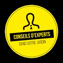 Expertenberatung-button-fr
